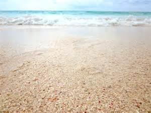 sand beach sand beach free images at clker com vector clip art