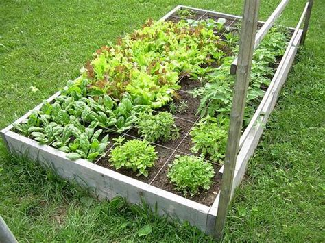 Square Garden Will Call by Square Foot Gardening Is For Everybody Including You