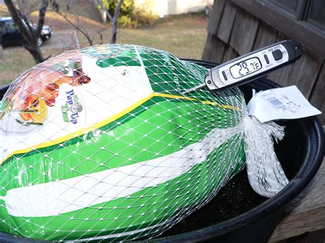 defrosting a turkey at room temperature thaw barfblog