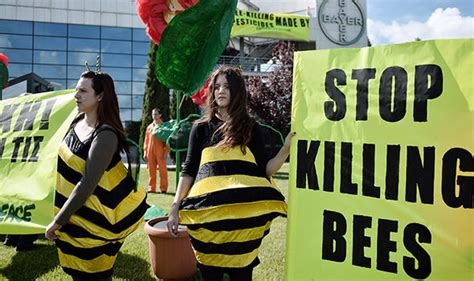 black mirror killer bees robot bees could be used to kill expert warns of