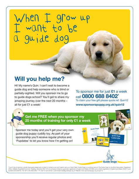 puppy ads guide dogs tests child focused puppy ad the drum