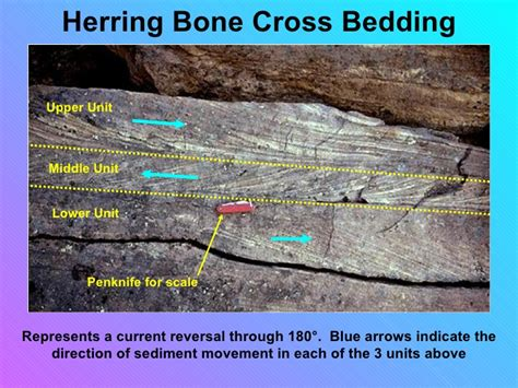 cross bedding definition cross bedding definition geology sle plans pdf