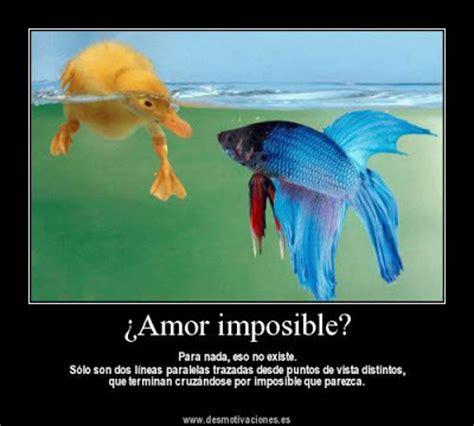 imagenes romanticas de amor imposible desmotivaciones de amor imposible imagenes romanticas