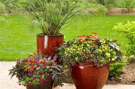 Small Container Garden Ideas Gardening Small Space And Container Gardening Small Space Ideas