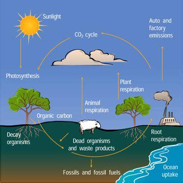 biogeochemical cycles | ucar center for science education