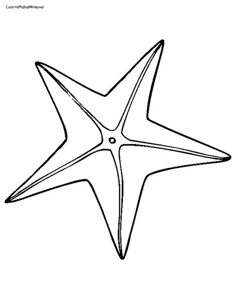 cute starfish coloring pages 9 images of starfish outline coloring page cute starfish