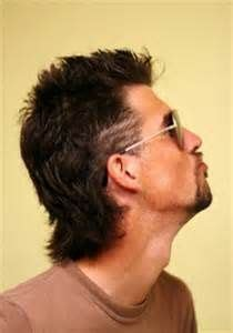 cool mullet hairstyles for guys 107 best images about mullet watch on pinterest billy