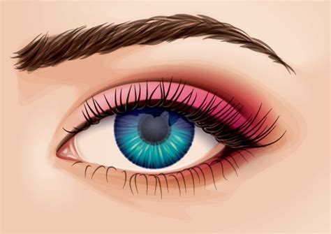 tutorial vector eye creating a detailed eye from stock in adobe illustrator