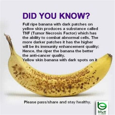 Banana Medicinal And Cosmetic Value by 17 Best Images About Go Fruit Yourself On