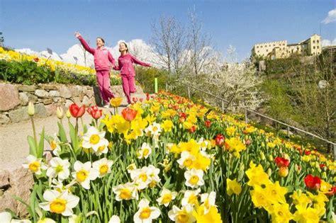 giardini sissi merano ai giardini di sissi a merano bz date 2018 trentino