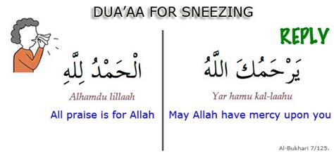 what to say before entering the bathroom dua for sneezing and its reply quran2hadith