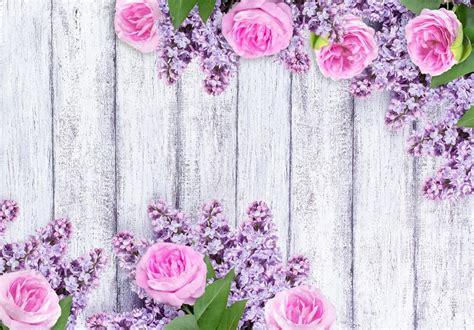 imagenes de rosas lilas flores lilas con rosas sobre fondo de tablas de madera mal
