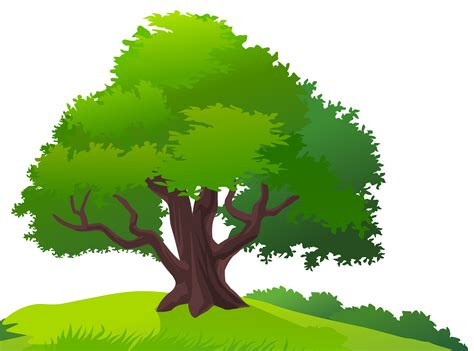 tree clipart nature clipart tree grass pencil and in color nature