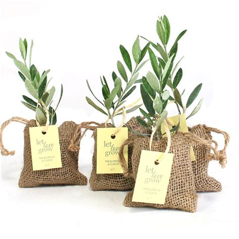 Wedding Favors Olive by Olive Tree Plant Favor Burlap Pouch