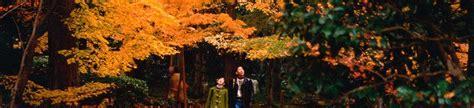 airbnb mata uang rupiah keindahan musim gugur di jepang sakura tour