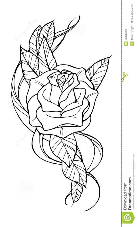 rose tattoo stock vector illustration  images beauty