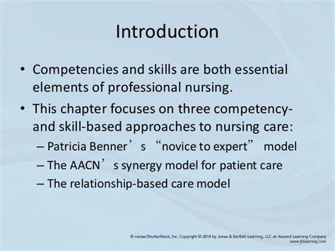synergy model nursing theory chapter 20 models and theories focused on competencies and