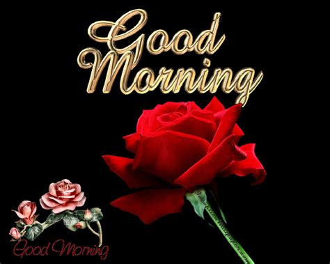 good morning hd wallpapers  good morning
