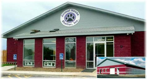 shelters in illinois animal house shelter huntley il is your local no kill shelter