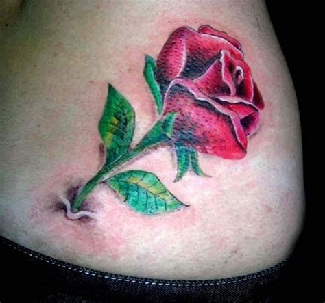 rose tattoo on stomach tattoos page 8