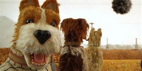 bill murray dogs isle of dogs review