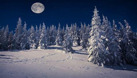 imagenes de jardines nocturnos paisajes nocturnos naturales imagenes de paisajes naturales