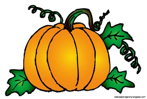 pumpkin clipart pumpkin patch clipart wallpapers gallery