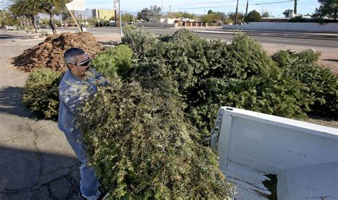 where to recycle your christmas tree in tucson local