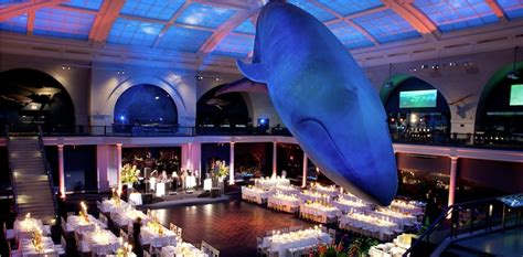 wedding venues in island to nyc museum wedding venues there s no supply in nyc gruber photographers