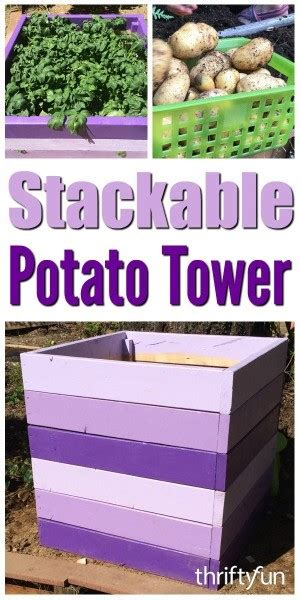 Stackable Potato Planter by Building A Stackable Potato Tower Thriftyfun