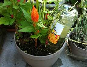 diy self watering planter tip bob vila