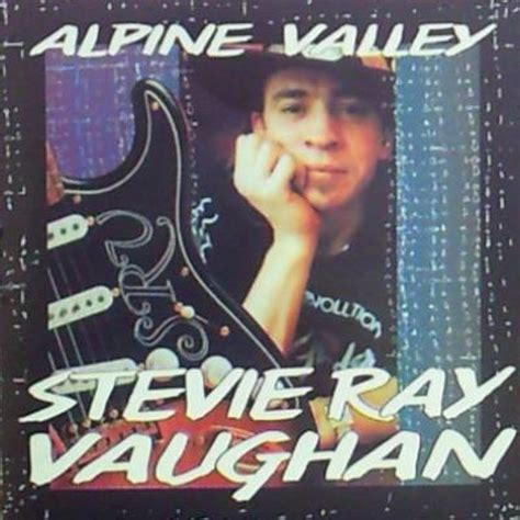 stevie ray vaughan  vinyl records cds   cdandlp
