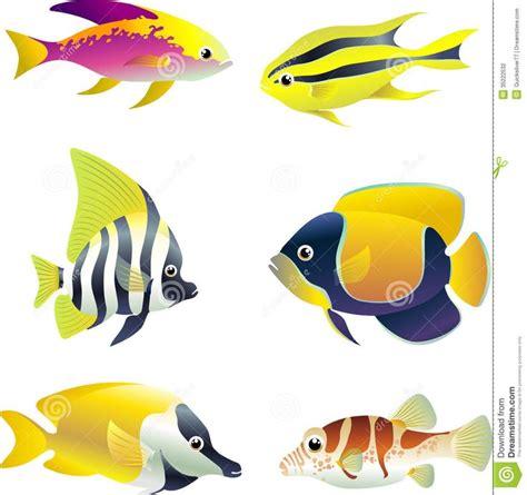 google images fish tropical fish types google search virtual aquarium