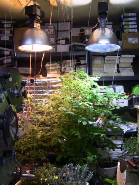 Patio Grow Lights Post Your Grow Light Setup