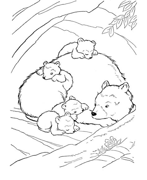 coloring pages animals hibernating hibernating bear coloring page az coloring pages