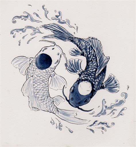 drawn koi carp yin yang pencil and in color drawn koi
