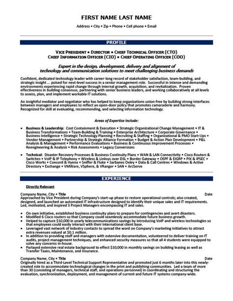 vice president of finance resume template premium resume