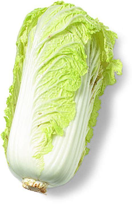 Napa cabbage   Recipes Wiki   FANDOM powered by Wikia