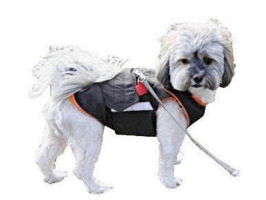 shih tzu jackets 25 best images about warm winter coats by pepperpetwear on coats
