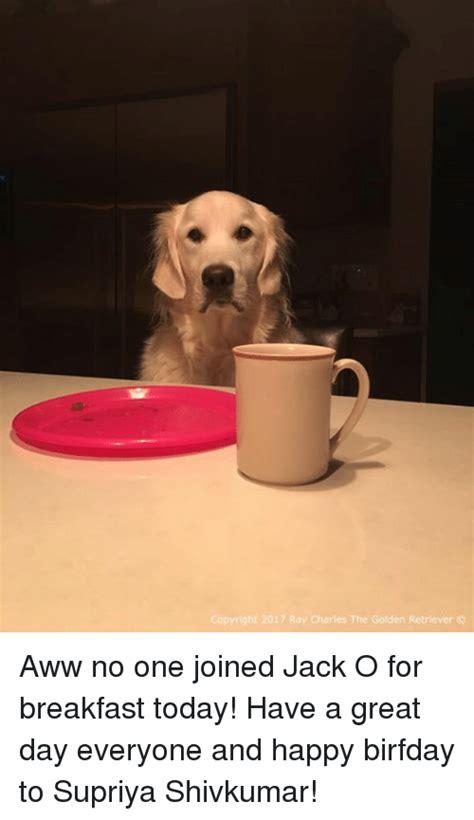 golden retriever breakfast golden retriever memes of 2017 on sizzle dank