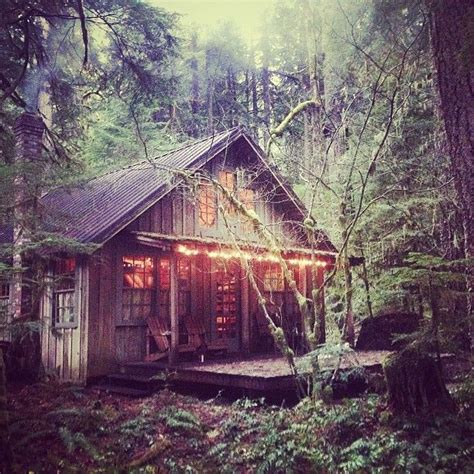 Cabins In National Forest by 125 Best Images About Bunkie Cottage And Cabin Lust On