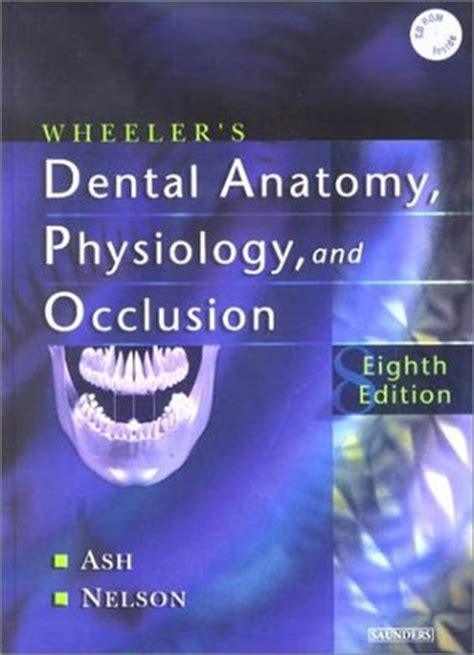 teeth a novel books wheeler s dental anatomy physiology and occlusion 8e by