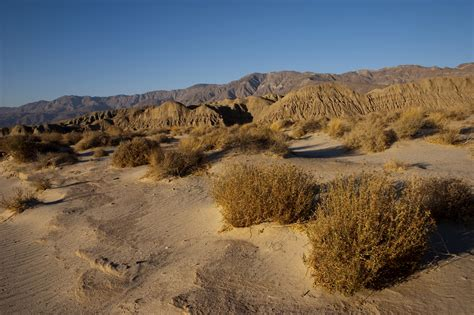 where is anza borrego anza borrego desert state park robert djakovic photography