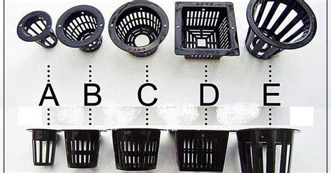 Pupuk Boron Untuk Cabe membuat larutan nutrisi yang digunakan pada cara tanam