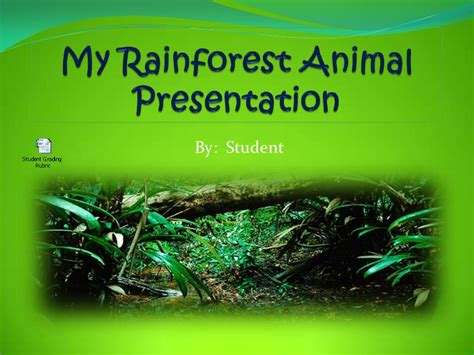 Student Powerpoint My Rainforest Animal Presentation 1 Rainforest Powerpoint