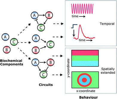 programmable chemical reaction networks: emulating