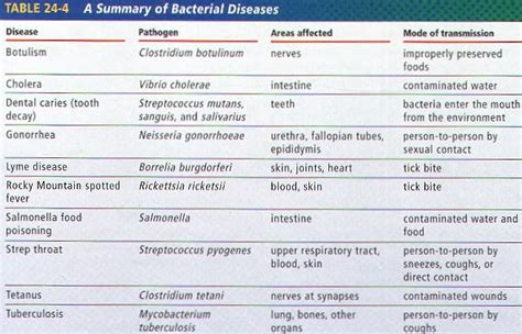 list of plant diseases caused by bacteria respiratory system diseases human anatomy chart