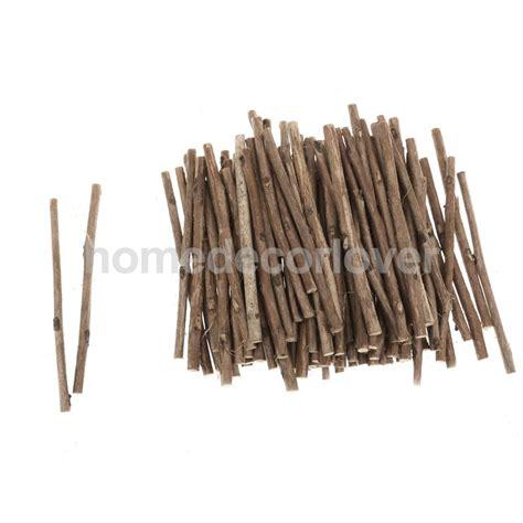 Hiasan Dinding Rabbit by 100pcs Camellia Wood Stick Branch For Diy
