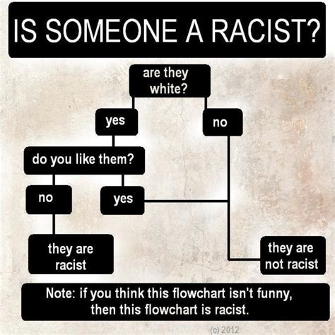 white is not a color steve sailer isteve flowchart quot is someone a quot
