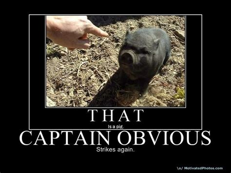 Thanks Captain Obvious Meme - captain obvious commercial quotes quotesgram